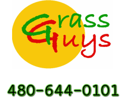 Grass Guys, Inc.